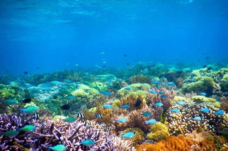 bautismo-buceo-islas-gili