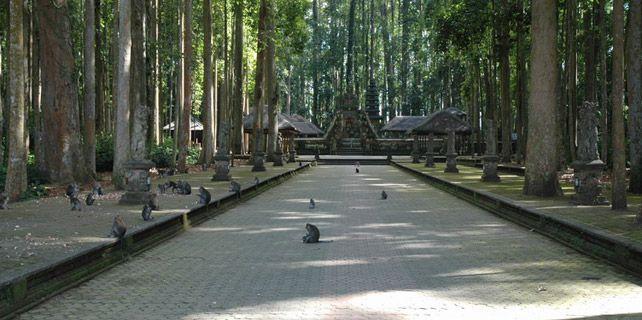 alas-kedaton-Bali