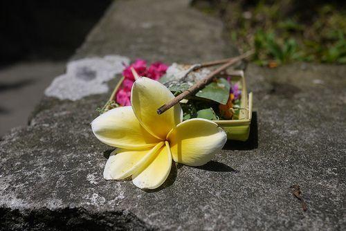 ofrenda-Bali