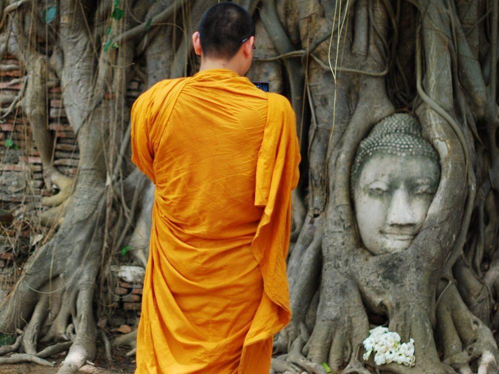 Ayutthaya-buda-en-el-árbol