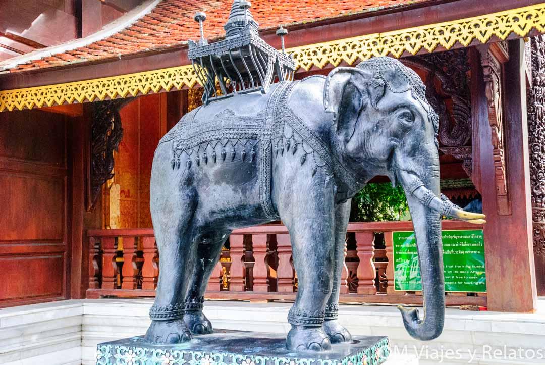 Doi Suthep-elefante