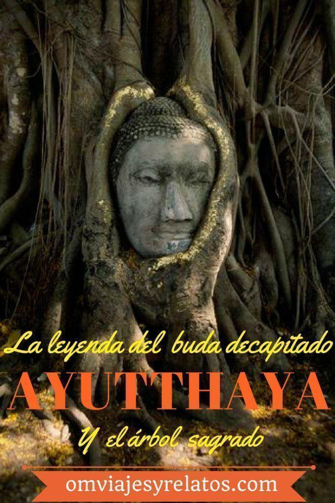 Buda-en-el-árbol-Tailandia