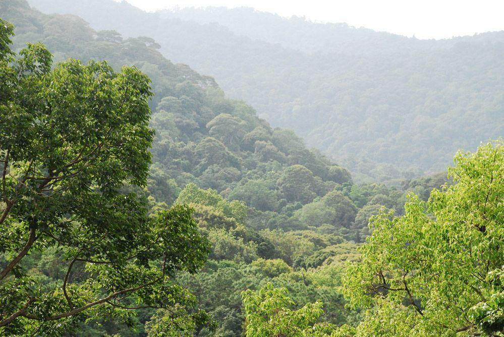 trekking-Tailandia-Doi-Inthanon-Doi-Suthep