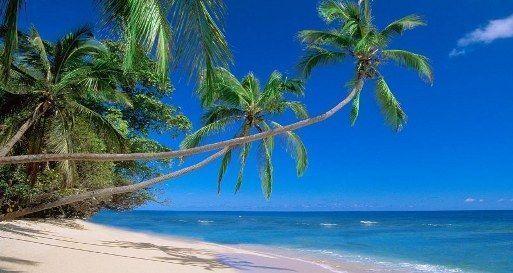 viaje-Samana-República-dominicana