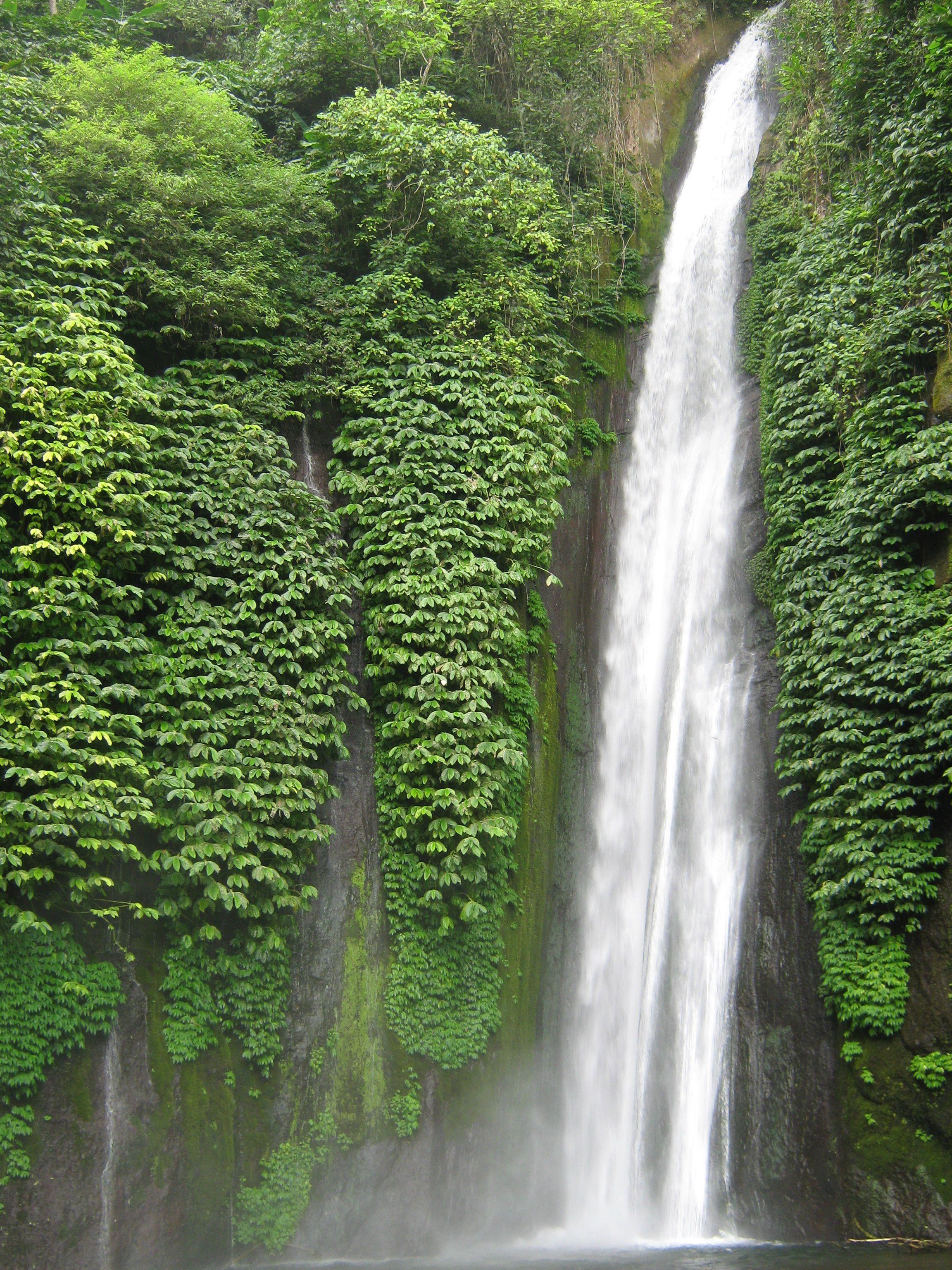 bali-la-ruta-del-agua-cascadas