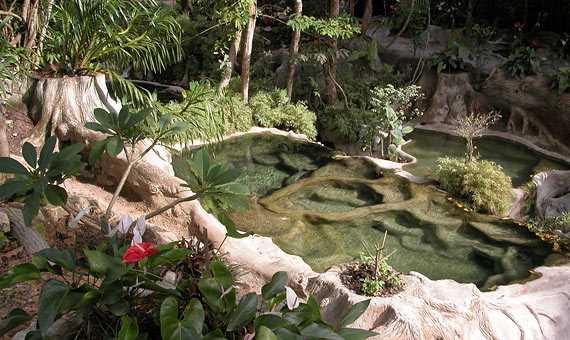 wareerak-hot-spring-spa-termas-Krabi