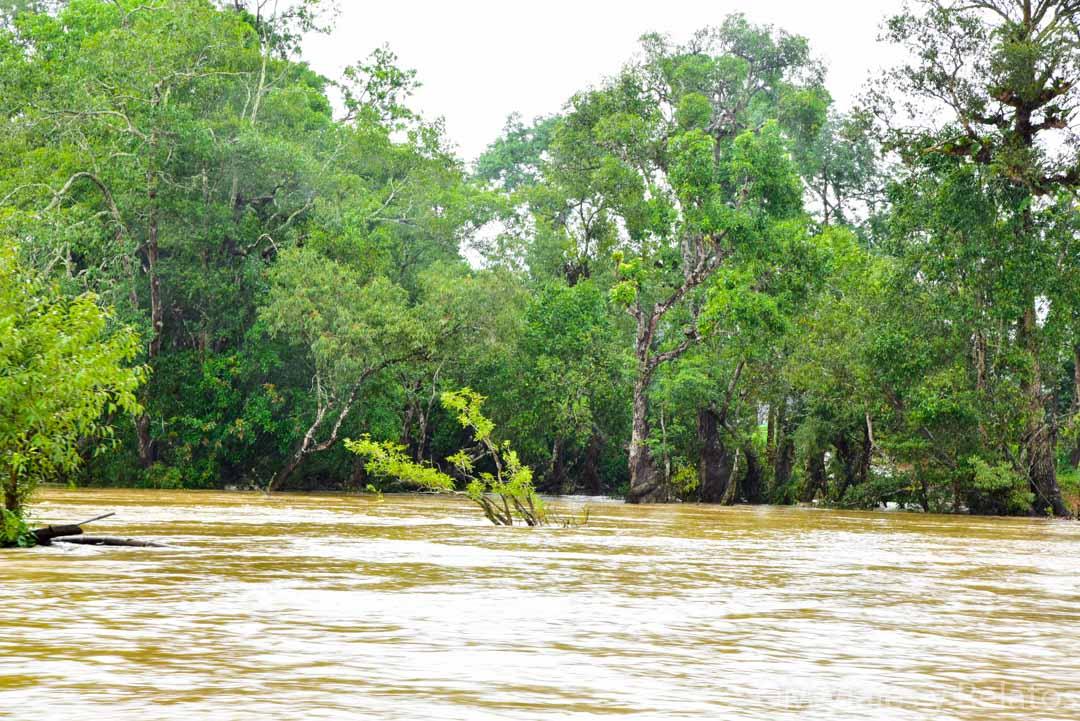 El-libro-de-la-selva-India-paisajes