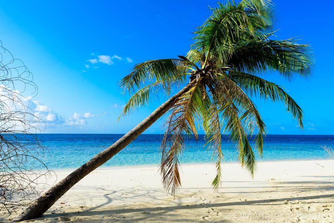viaje-paraíso-Maldivas