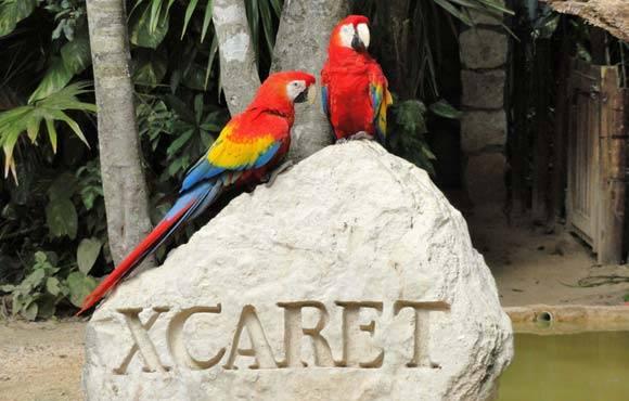 las-mejores-excuriones-riviera-maya-xcaret