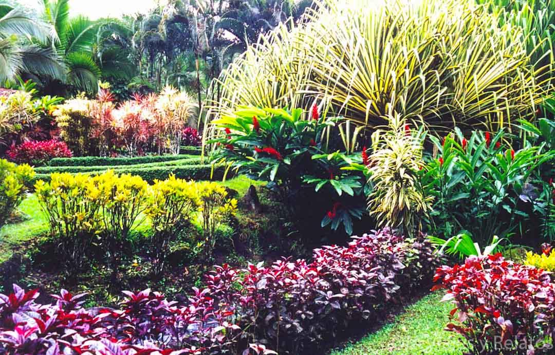 Balneario-Tabacón-en-Costa-Rica-el-spa-natural-más-bello-del-mundo
