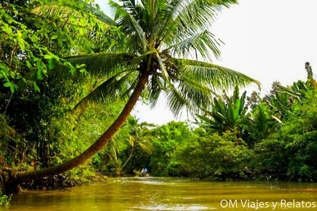 los-canales-estrechos-Mekong