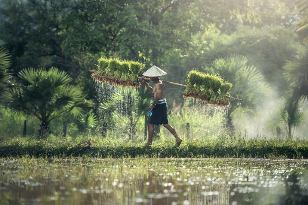 visados-para-Indonesia-Sudeste-Asiático