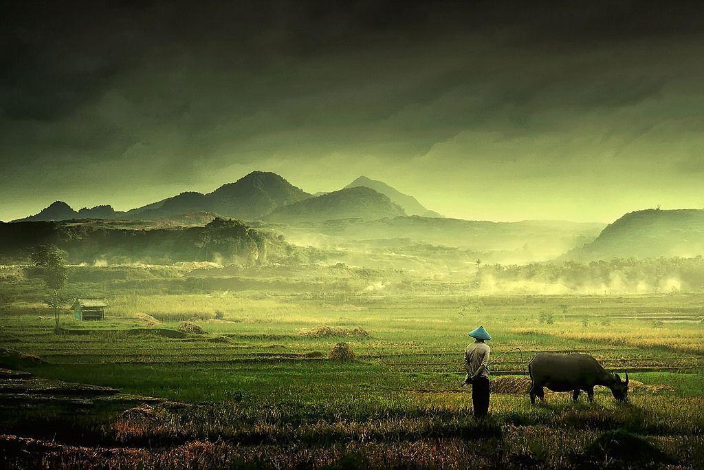 Diario de viaje a Indonesia