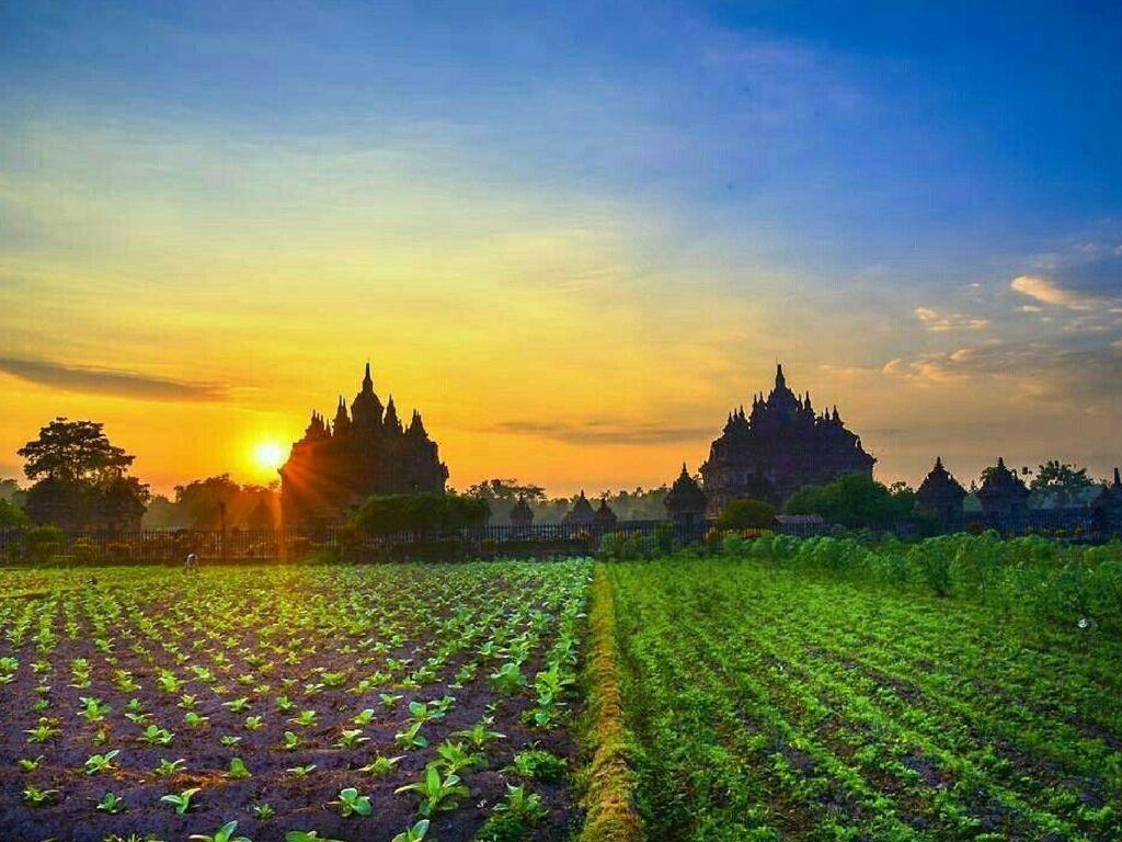 que-ver-en-Yogyakarta-atardecer