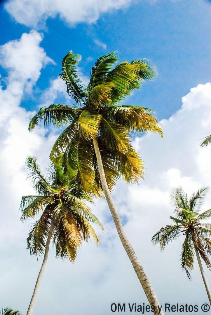 MEJORES-PLAYAS-REPÚBLICA-DOMINICANA-SAMANÁ