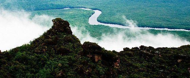 selva-Venezuela