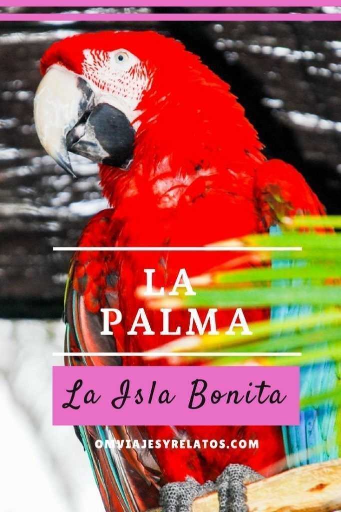 La-Palma-Canary-Islands