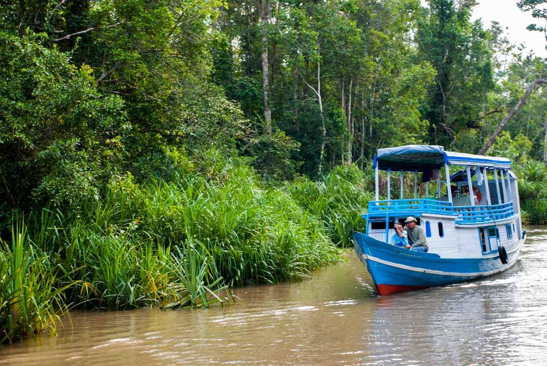 Klotok-Borneo