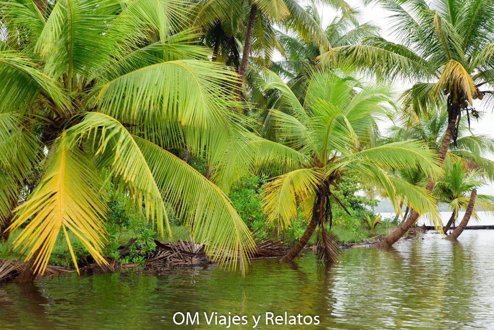 viaje-Kerala-India