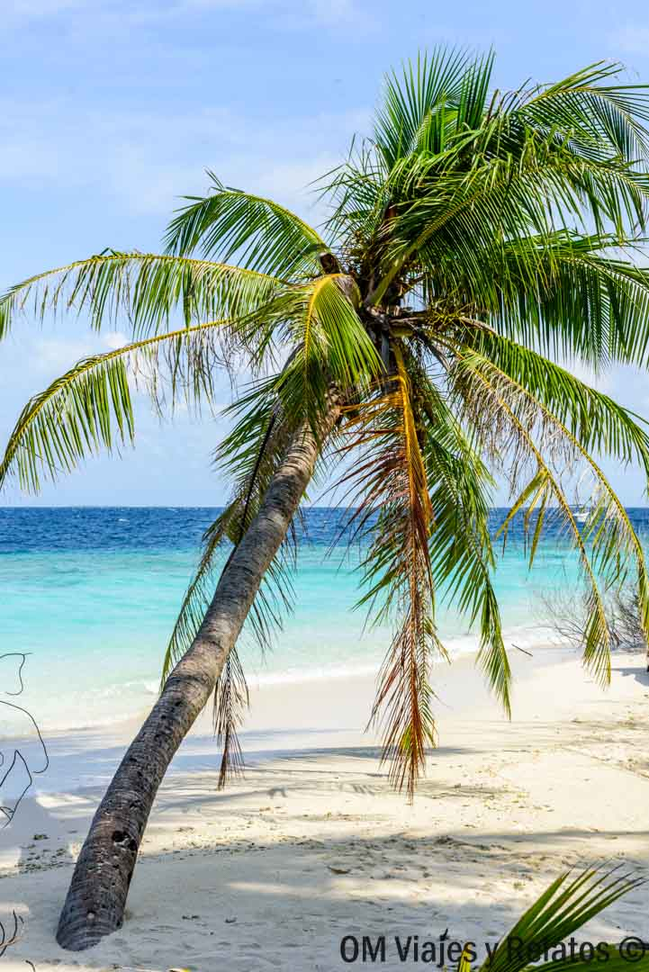 viajar-a-Maldivas-de-forma-económica