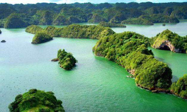 PARQUE NACIONAL LOS HAITISES: UN VIAJE A LOS ESCENARIOS DEL JURÁSICO