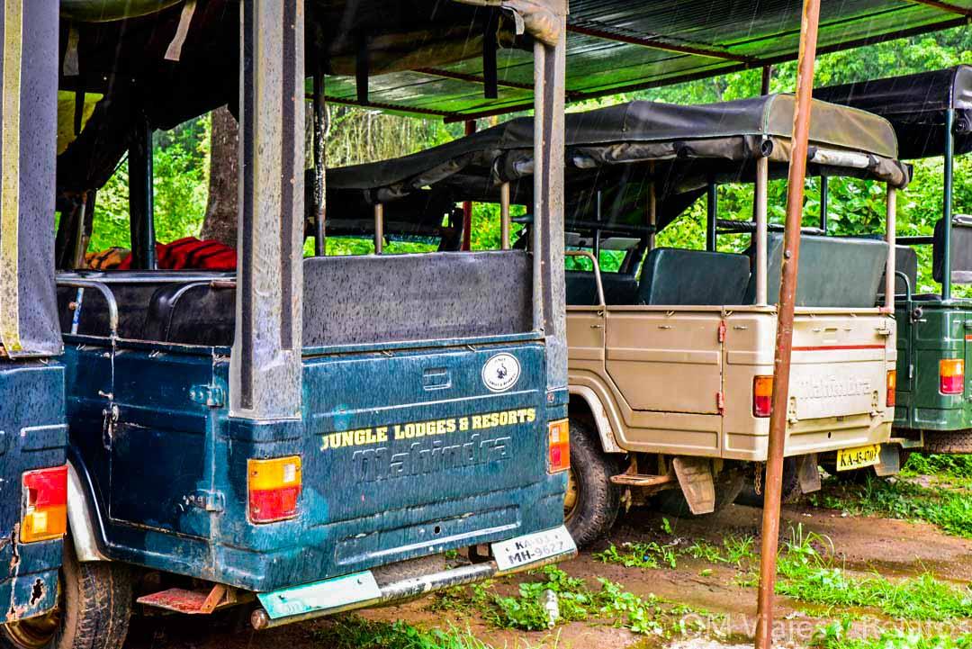 tour-Safaris-Jeep-India