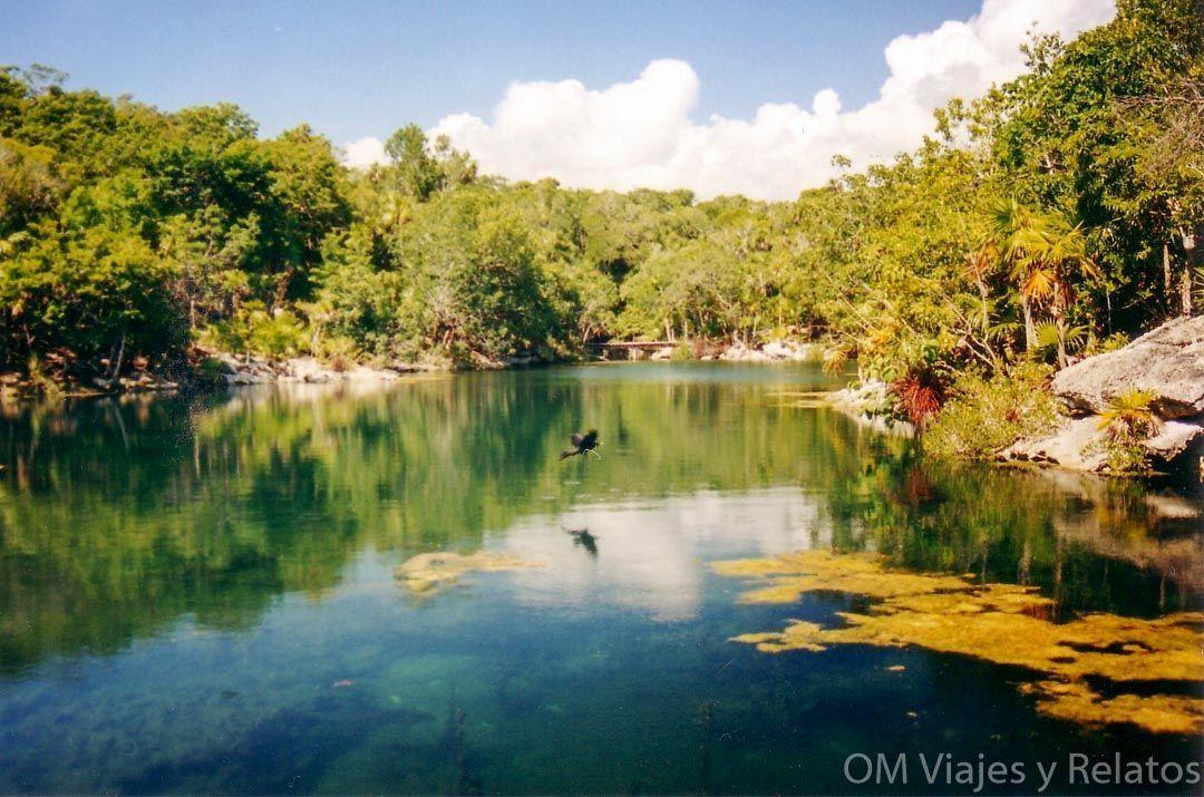 Qué-ver-en-la-Riviera-Maya-Cenotes