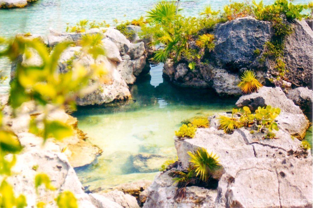 Riviera-Maya-con-niños-Xcaret