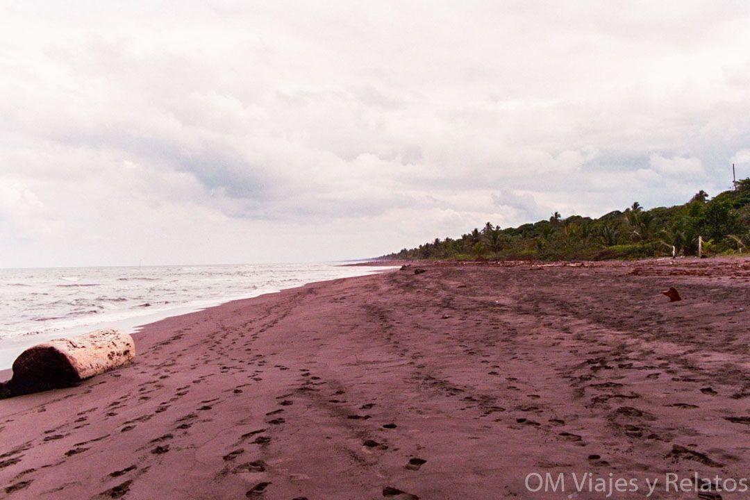 Tortuguero-por-libre-Mar-Caribe-Costa-Rica
