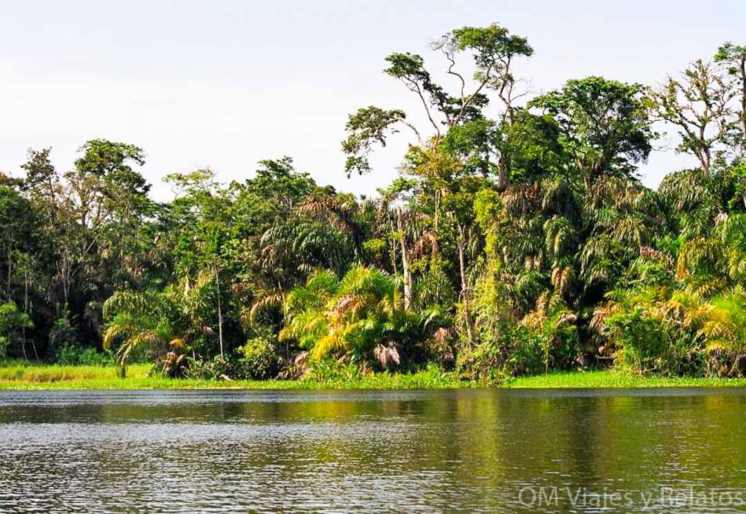 rutas-en-bote-canales-Tortuguero