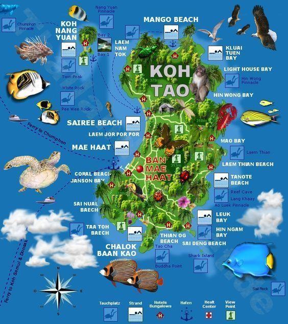 mejores-islas-de-Tailandia-Koh-Tao