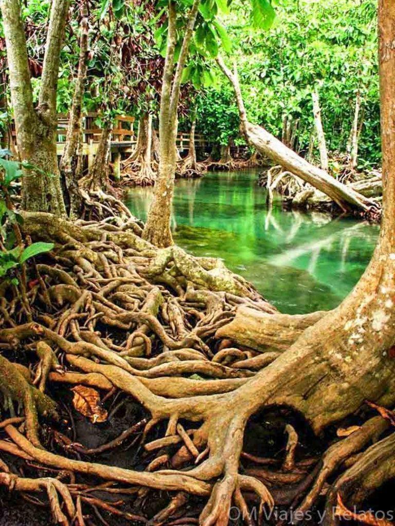 Krabi-Laguna-Esmeralda