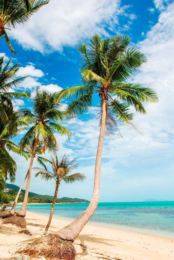 Islas De Tailandia 7 Islas Tropicales Para Unas Vacaciones Paradisíacas