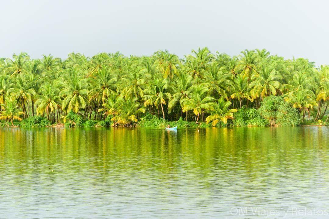 Isla de Valiyaparamba Backwaters