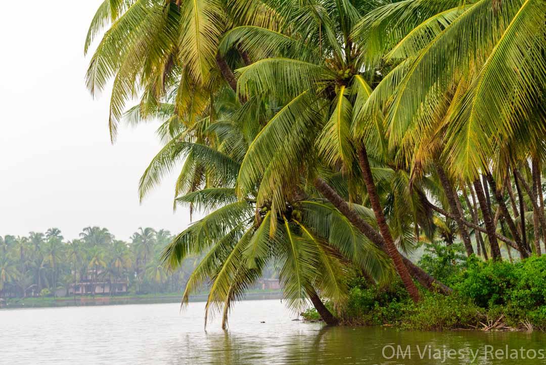 paisajes-sur-India
