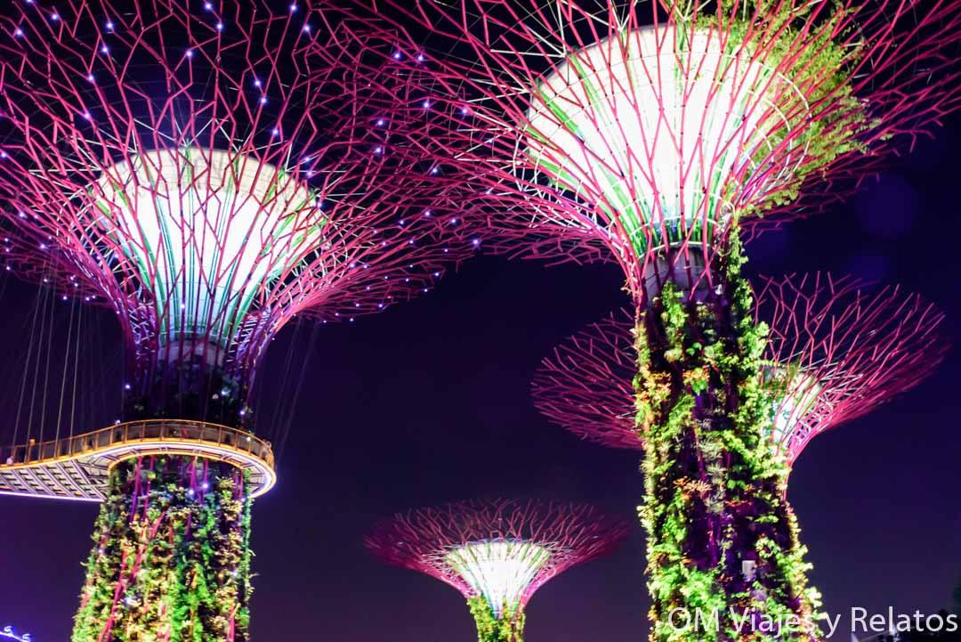 jardines-y-árboles-de-Singapur