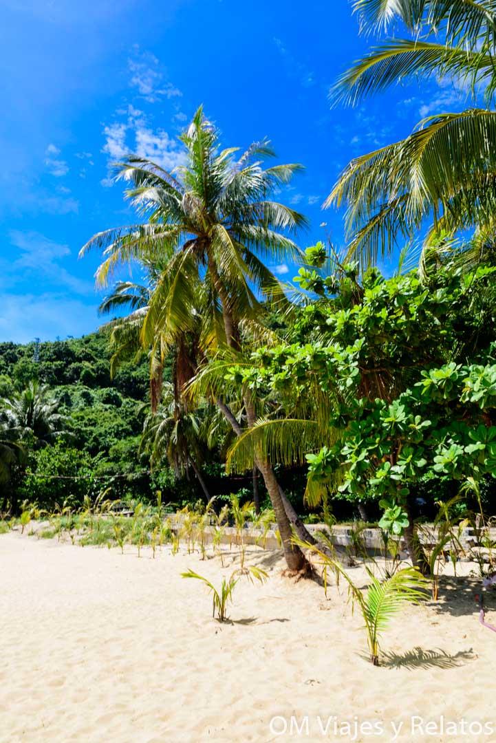 islas Cham, escursión desde Hoi An