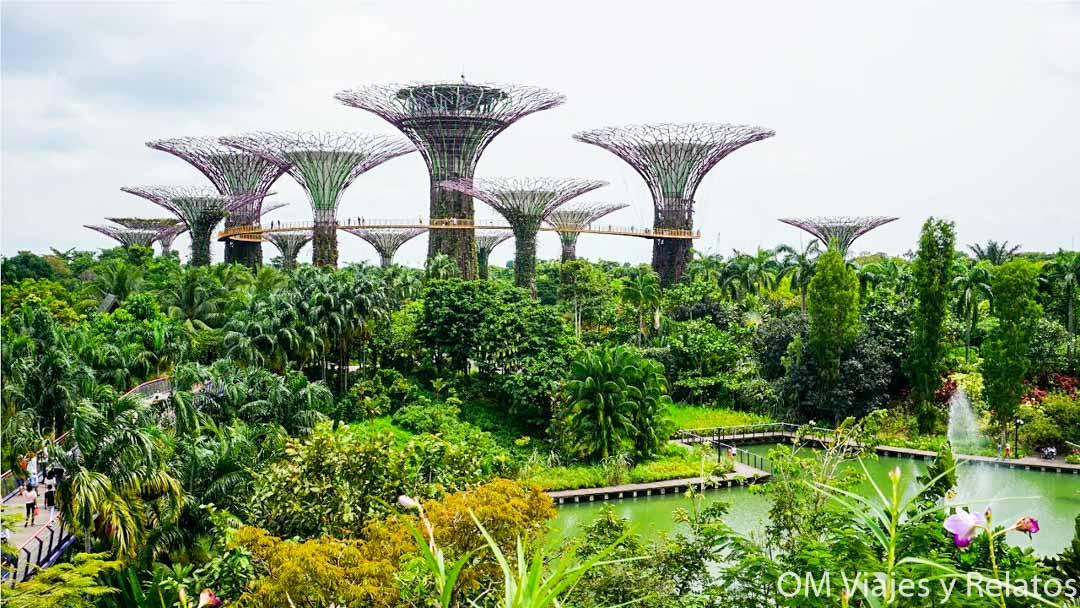 gardens-by-the-bay-Singapur