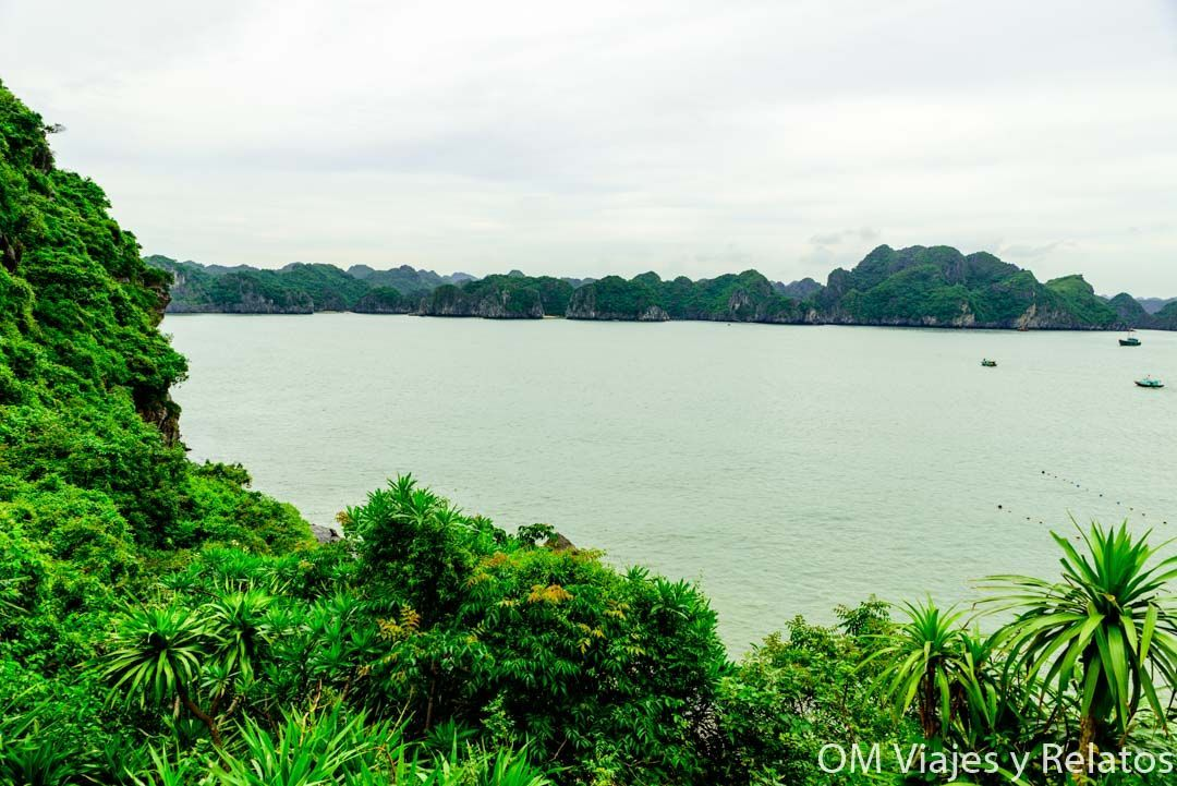 Monkey Island Vietnam