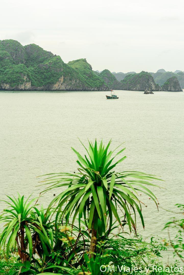 excursiones-Hanoi-bahía-de-halong
