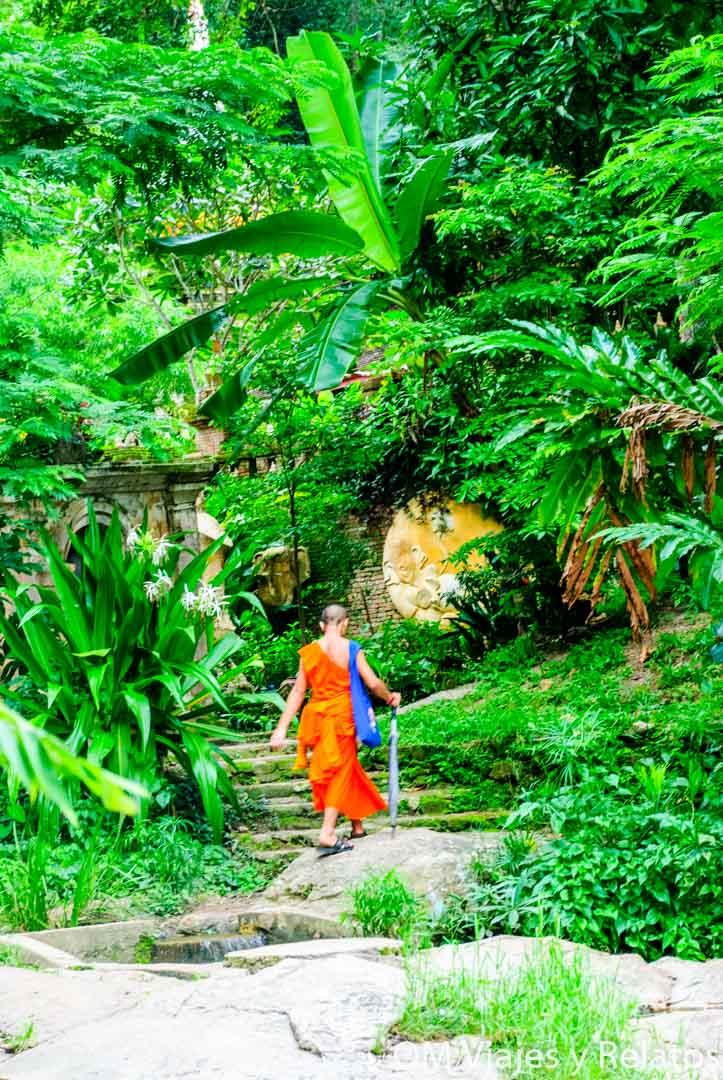 que-ver-cerca-de-Chiang-Mai-y-alrededores
