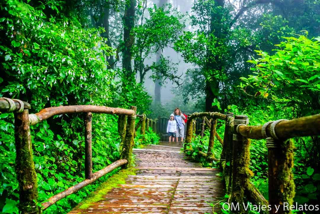 visitar-Chiang-Mai-con-niños