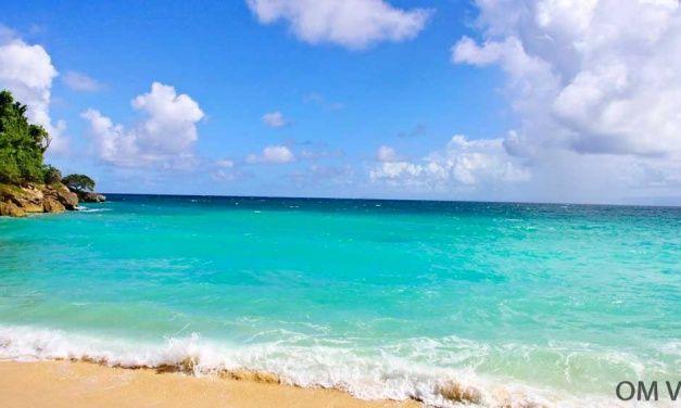 ISLA BACARDÍ (CAYO LEVANTADO): EL PARAÍSO EXISTE EN REPÚBLICA DOMINICANA