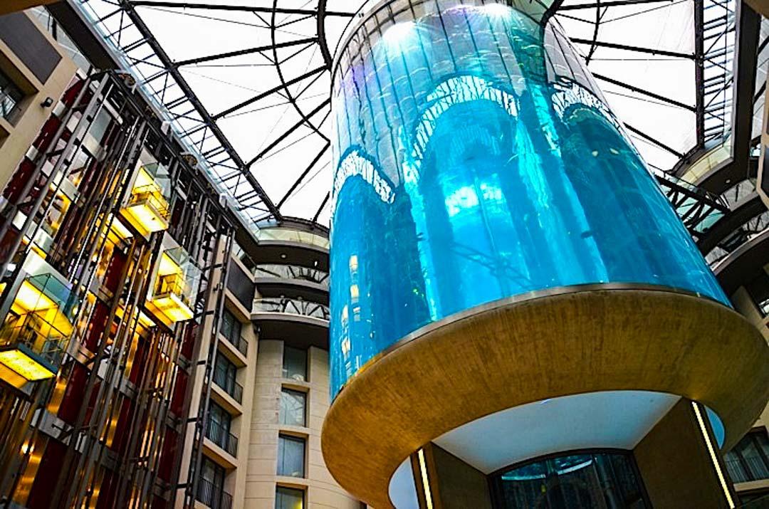 acuario-Berlin