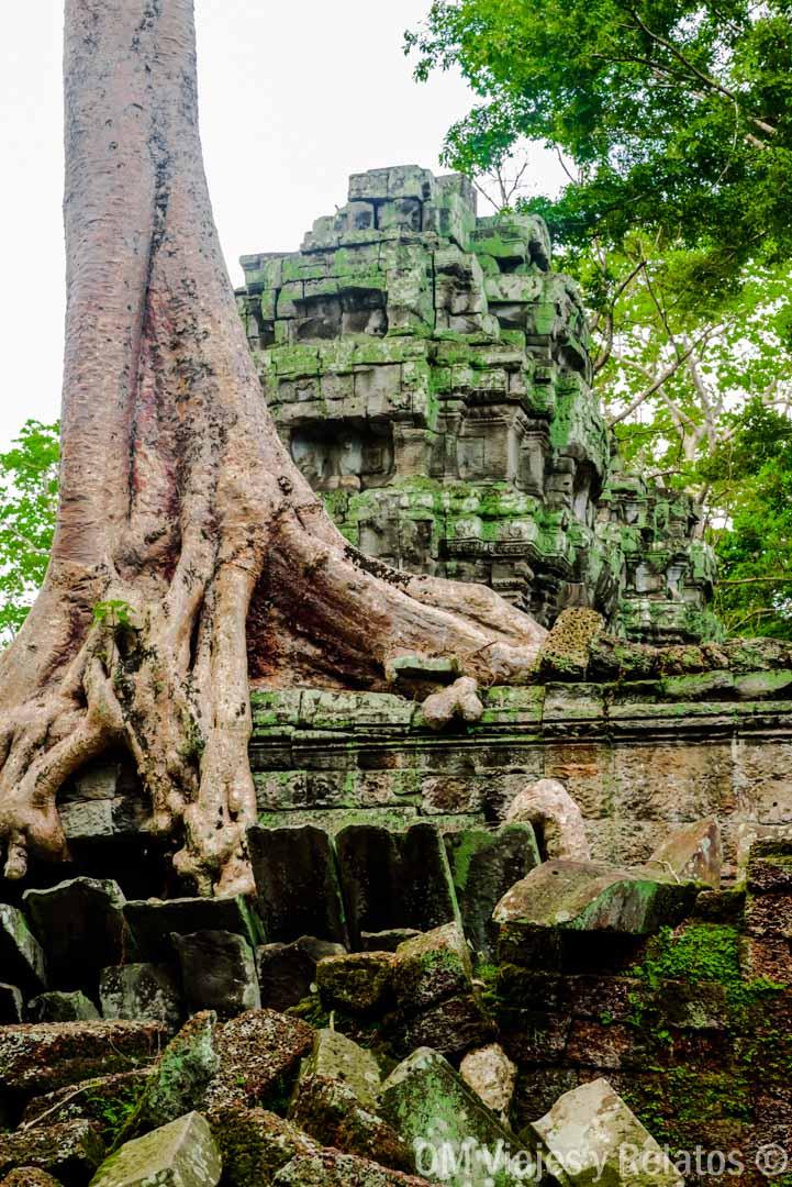 ta-phrom-templo-Angelina-Jolie
