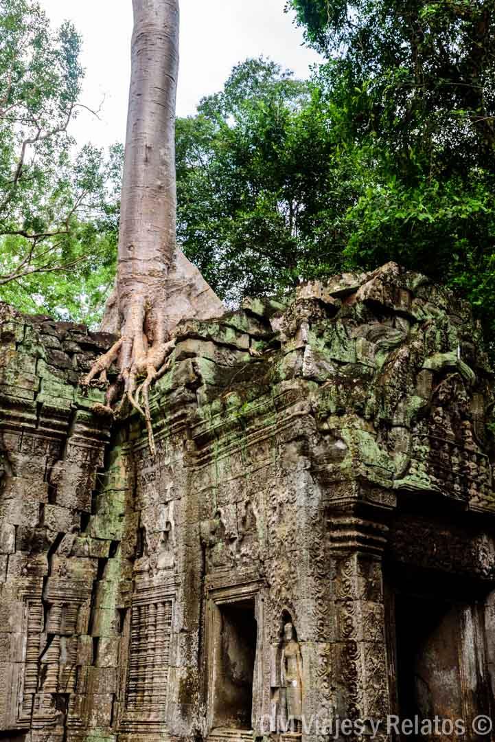 visitar-templo-Tomb-Raider-Angkor-wat-Camboya