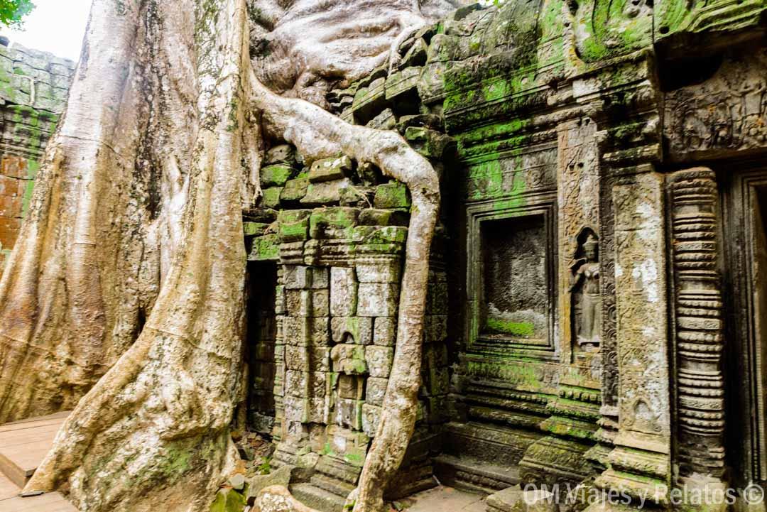Ta Prohm-templo-Tomb-Raider