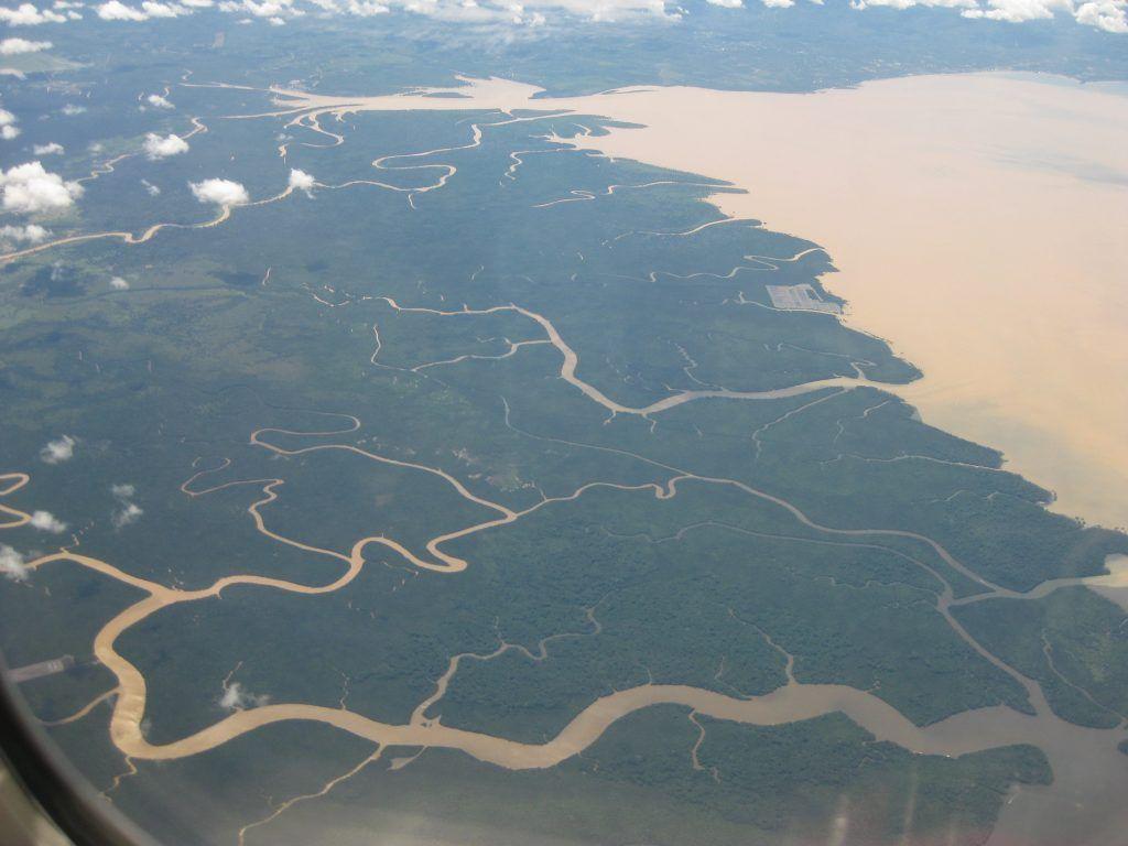Kalimantan-Borneo-organtunates