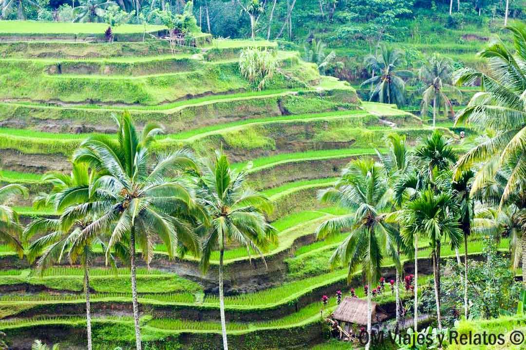 itinerario-30-días-sudeste-asiático