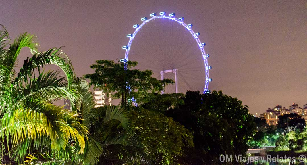 cosas-que-ver-Noria-Singapur